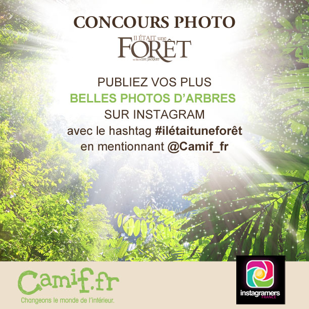 Concours Photo Instagram_CAMIF
